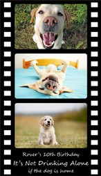 Birthday - Film Strip